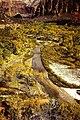 Zion NP Big Bend Virgin River E Mesa Trail nw PICT0089 19941031.jpg