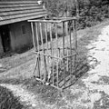 """""""Rebrank"""" za steljo, Zadlog 1959 (2).jpg"""