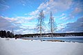 Äänekoski in winter.jpg