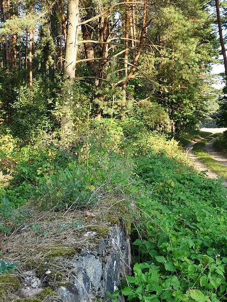 File:Žydų kapinių tvora, Svėdasai.JPG