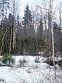 Апрельский лес - panoramio.jpg