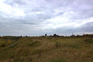 Znamensky District, Omsk Oblast District in Omsk Oblast, Russia