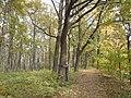 Дендрологический сад им. Р.И. Шредера - panoramio.jpg