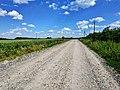 Дорога на с. Вищі Вовківці, фото 1.jpg
