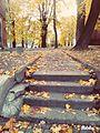 Дрогобицький парк.jpg