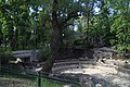 Зоопарк (Київський) IMG 3332.jpg