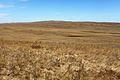 Карстовое поле Жанатаускен. В центре гора Маяктау. Северо-восточное направление - panoramio.jpg