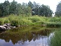 Омут - panoramio (7).jpg