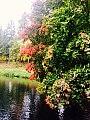 Осень на Серебряном озере.jpg