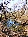 Правобережная старица реки Яузы с фрагментом низкой поймы 02.jpg