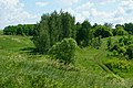Проселочная дорога к памятнику природы.jpg