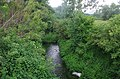 Река Матица (Дебрца - Охридско) 07.jpg