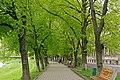 Ужгород, Липова алея P1360448.jpg