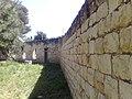 חוות סג'רה - אלעד.ב 3.jpg