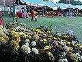 गोदावरी फूल३.jpg