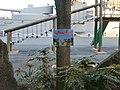 三笠公園 - panoramio (44).jpg