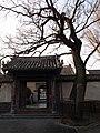 千年古槐树 - panoramio.jpg