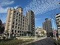 台北市 - panoramio (80).jpg