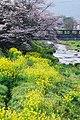 和水町の風景 - panoramio.jpg