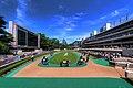 東京競馬場 - panoramio (5).jpg