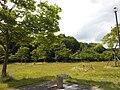 桂中央公園 Katsura Chūō Park - panoramio (1).jpg