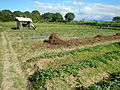 0581jfLandscapes Roads Vegetables Fields Binagbag Angat Bulacanfvf 30.JPG