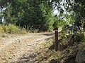 08-06-2017 Way-marker post, Via Algarviana long distance hiking trail, Alfarrobeiras (2).JPG