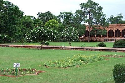102-Taj-Mahal-Gardens.JPG