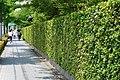 130706 Hokongoin Kyoto Japan01s3.jpg