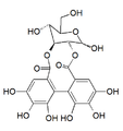 2,3-(S)-Hexahydroxydiphenoyl-D-glucose.png