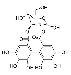 2,3-(S)-Hexahydroxydiphenoyl-D-glucose - Image: 2,3 (S) Hexahydroxydiphenoyl D glucose
