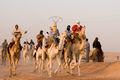 20070227 OUARGLA Camel Race.jpg