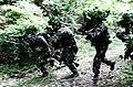 2012.7 53사단 전술집중훈련 Rep.of Korea Army 53th Division (7541083460).jpg
