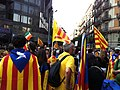 2012 Catalan independence protest (48).JPG
