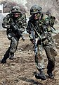 2014.2.25 육군 3군단 특공연대 KCTC 훈련 Korea Combat Training Center of Republic of Korea Army (13142066774).jpg