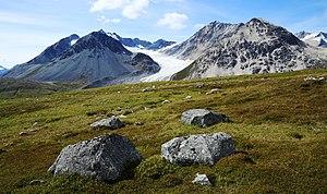 Tatshenshini-Alsek Provincial Park - Samuel Glacier