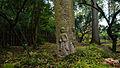 2015 1016 Japanese Garden Clingendael 05.jpg