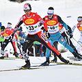20161217 FIS WC NK Ramsau 8374.jpg