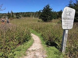 Lewis Fork Wilderness wilderness area in Virginia