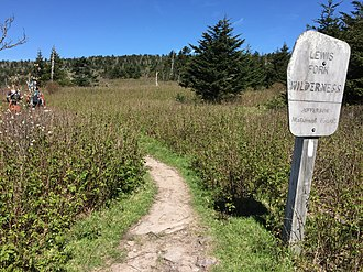 Lewis Fork Wilderness - Image: 2017 05 16 10 31 00 View south along the Appalachian Trail entering the Lewis Fork Wilderness, within the Mount Rogers National Recreation Area in Grayson County, Virginia