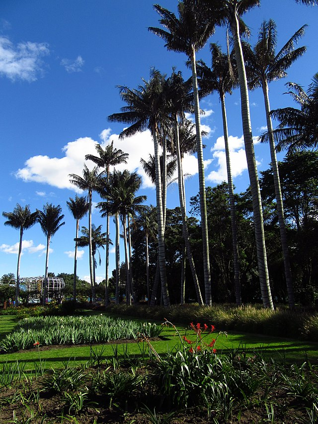 Jardín botánico de Bogotá - Wikiwand