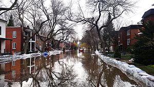 2017 Quebec floods - Image: 2017 Quebec Floods Montreal (34504962346)
