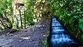25 Fontes Levada hiking (37386482614).jpg