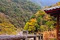 313, Taiwan, 新竹縣尖石鄉秀巒村 - panoramio (41).jpg