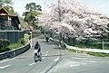 3 Chome Esakachō, Suita-shi, Ōsaka-fu 564-0063, Japan - panoramio (1).jpg