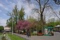 51-101-0267 Odesa SAM 9499.jpg