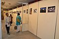 55th Dum Dum Salon - Indian Museum - Kolkata 2012-11-23 2033.JPG