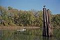 98k025 8mp rowing near Towhead Island (6528604473).jpg