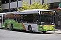 ACTION - BUS 491 - Custom Coaches 'CB60' Evo II bodied MAN 18.320 (Euro V).jpg