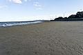 A Visit To Sandymount Strand (6050696921).jpg